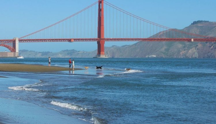 Best things to do in San Francisco for a weekend